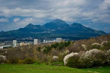 Пятигорск вошел в топ-5 российских курортов, популярных для отдыха на 23 февраля